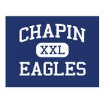 Chapin Eagles Middle Chapin South Carolina Post Cards