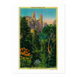 Chapiteles de la catedral y valle de Yosemite Tarjetas Postales