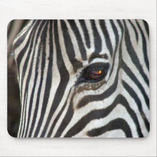 Chapman's Zebra Mouse Pad