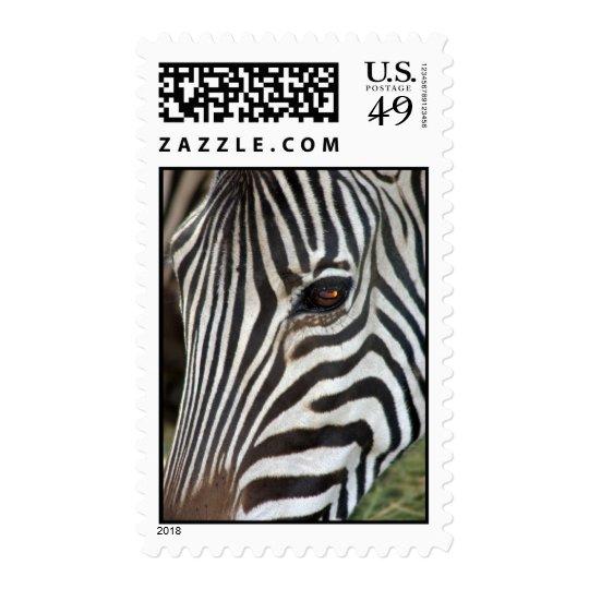 Chapman's Zebra Postage