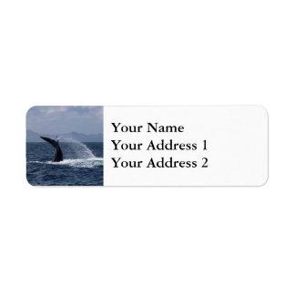 Chapoteo de la cola de la ballena jorobada etiqueta de remite