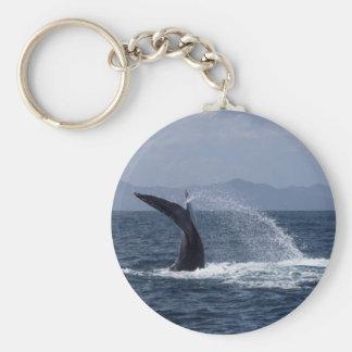 Chapoteo de la cola de la ballena jorobada llavero redondo tipo pin
