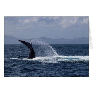 Chapoteo de la cola de la ballena jorobada tarjeta pequeña