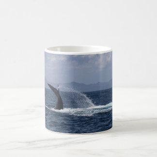 Chapoteo de la cola de la ballena jorobada taza básica blanca