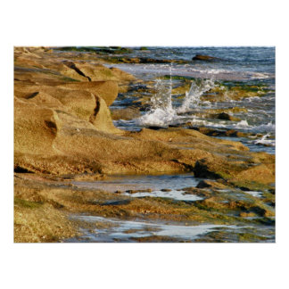 Chapoteo en la playa rocosa póster