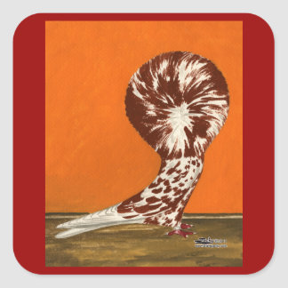 Chapoteo rojo de Jacobin Calcomanía Cuadrada