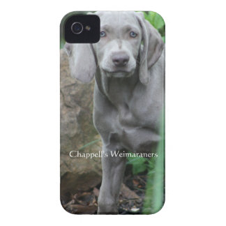 Chappell's Weimaraners Case-Mate iPhone 4 Case