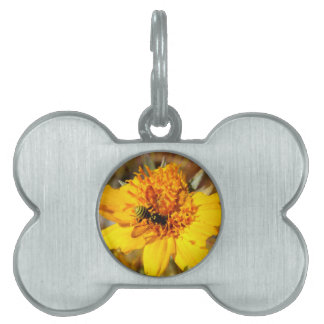 Chaqueta amarilla en la flor amarilla placas de nombre de mascota