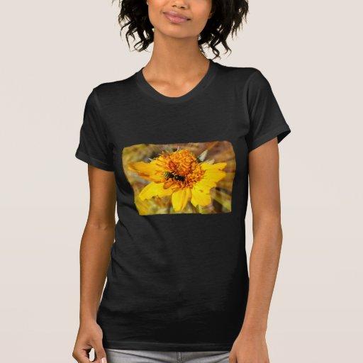 Chaqueta amarilla en la flor amarilla
