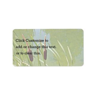 Charca con las plantas de la cola de gato etiqueta de dirección