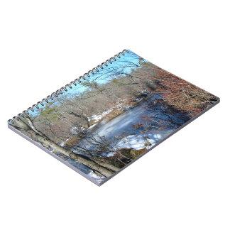 Charca congelada de los humedales spiral notebook