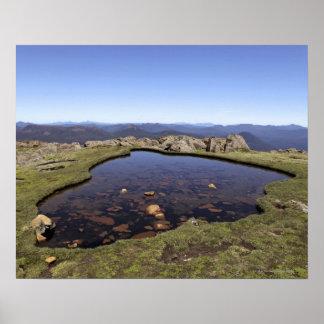 Charca de agua, soporte Ossa, parque nacional de O Póster