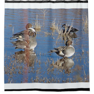 Charca del animal de la fauna de los pájaros del cortina de baño