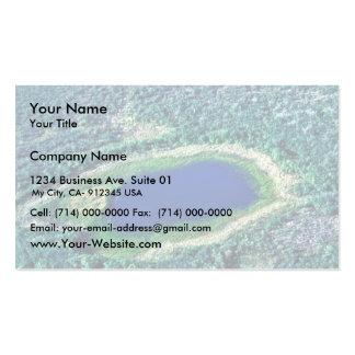 Charca del humedal tarjetas de visita