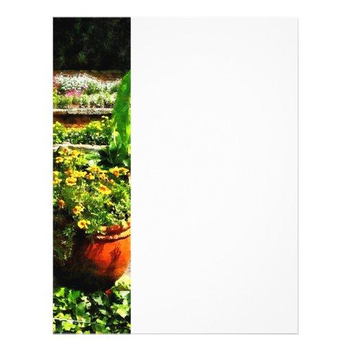 "Charca del jardín folleto 8.5"" x 11"""