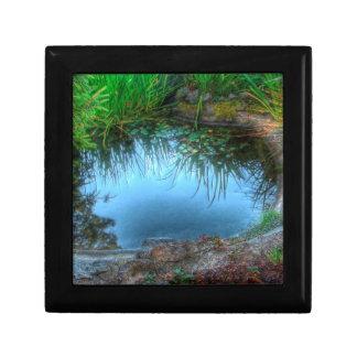 Charca del lirio de la reserva de naturaleza caja de recuerdo
