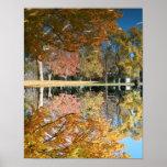Charca del otoño, al revés, retrato 1 de 2 posters