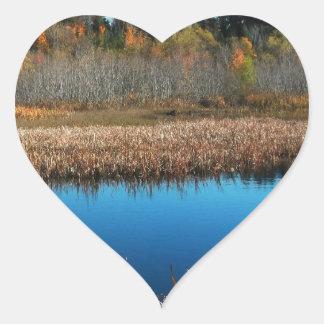 Charca en árboles de la región pantanosa en el ver calcomanía corazón personalizadas