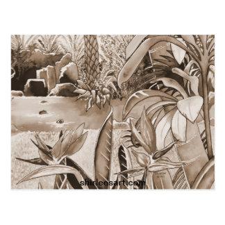 Charca en la plantación de la piña tarjetas postales