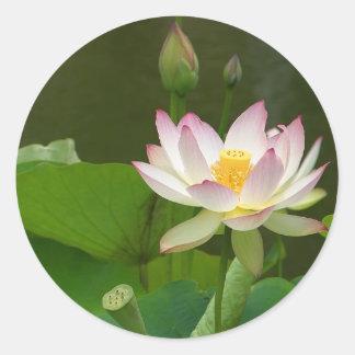 Charcas de las flores de Lotus Pegatina Redonda