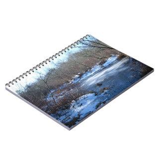 Charcas del humedal en invierno spiral notebook