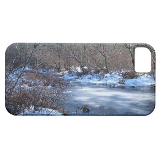 Charcas del humedal en invierno funda para iPhone SE/5/5s