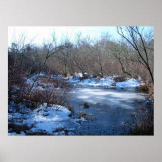 Charcas del humedal en invierno impresiones