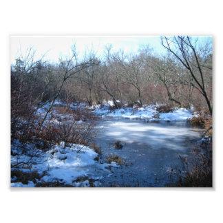 Charcas del humedal en invierno arte con fotos