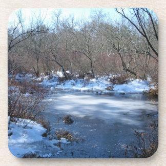 Charcas del humedal en invierno posavaso