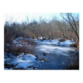 Charcas del humedal en invierno tarjetas postales