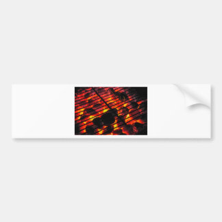 Charcoal Barbecue Bumper Stickers