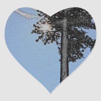 Charcoal Pine with Sun Heart Sticker