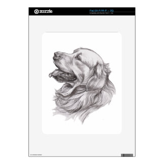 Charcoal portrait drawing of a Golden Retriever Skins For The iPad