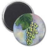Chardonnay Wine Grapes Magnet
