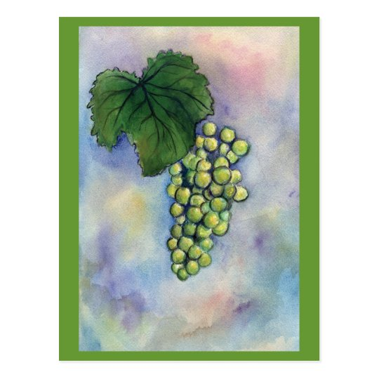 Chardonnay Wine Grapes Postcard