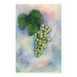 Chardonnay Wine Grapes Stationery