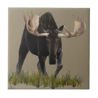 Charging Bull Moose Ceramic Tile