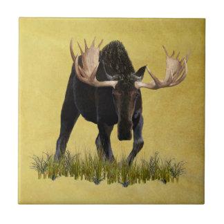 Charging Bull Moose Tile