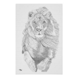 Charging Lion Poster
