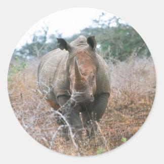 Charging Rhino Round Sticker