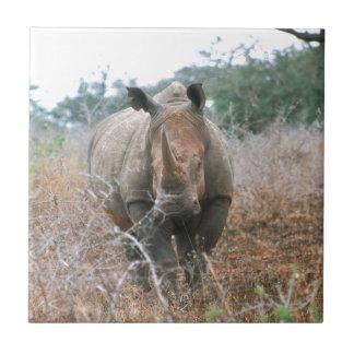 Charging Rhino Tile