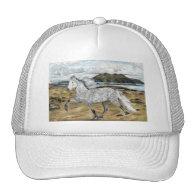 Charismatic ~ Ball cap Trucker Hats