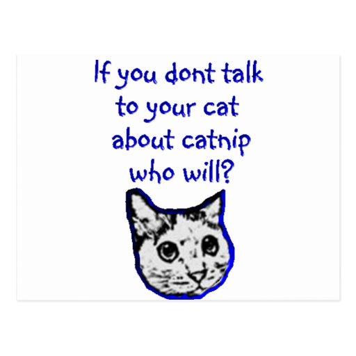 Charla a su gato sobre catnip postales