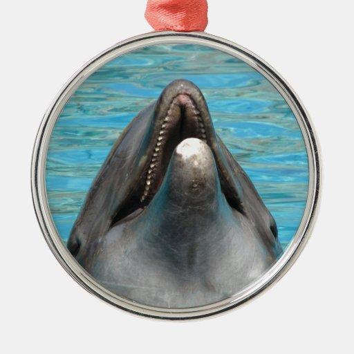 Charla del delfín adorno redondo plateado