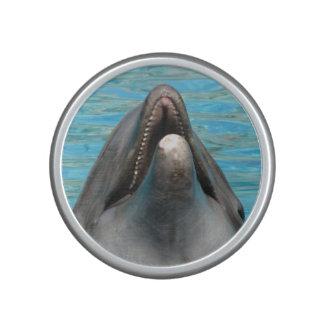 Charla del delfín altavoz bluetooth