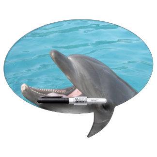 Charla del delfín pizarra blanca