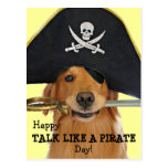 Charla del golden retriever como un día del pirata postal