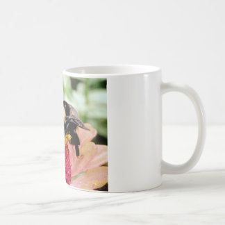 Charla dulce taza básica blanca