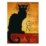 Charla Noir - gato negro Postales