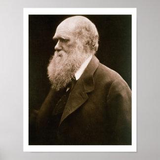 Charles Darwin (1809-82) (foto) Póster